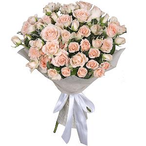 Недорогие живые цветы в кирове заказ цветов по краснодарскому краю отрадненского района
