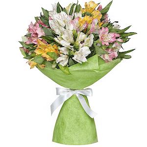 Купить цветы в кирове недорого заказать латекс для цветов